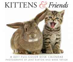 Kittens & Friends Calendar