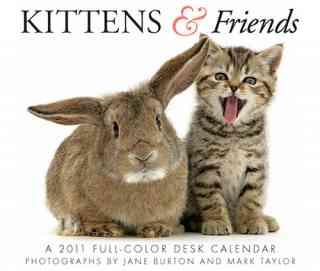 Kittens & Friends Calendar